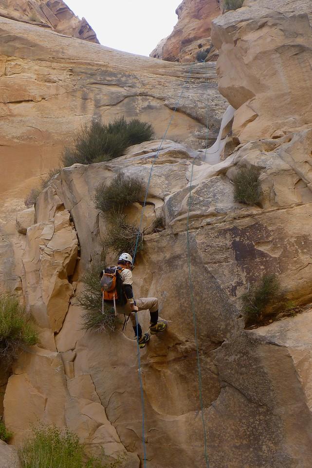Right Fork Stegosaur Slot canyon descent - Hal on the last rappel.