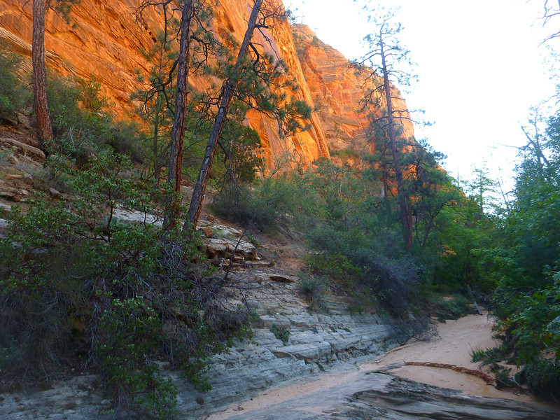 Hepworth Wash hike<br /> This hike starts at the east end of the Zion tunnel and goes up a Gifford Creek