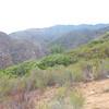 Palomar Mts.