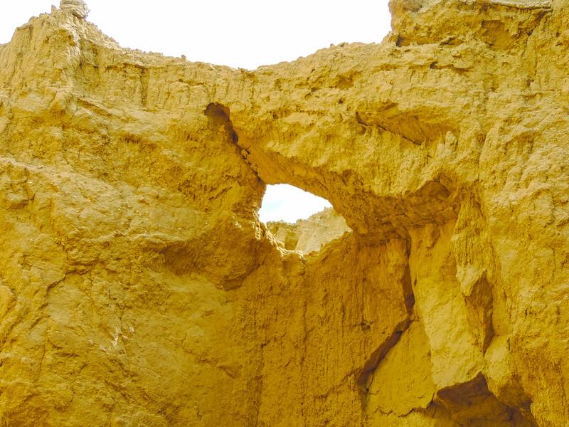 Ironwood Arch
