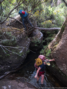 Scrambling over logs and boulders - but where's the canyon?