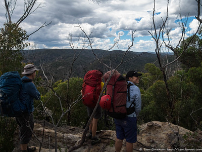 On a ridge overlooking Yarramun Creek