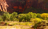 Love those yellow trees and red walls -- with sun lighting the Virgin River.