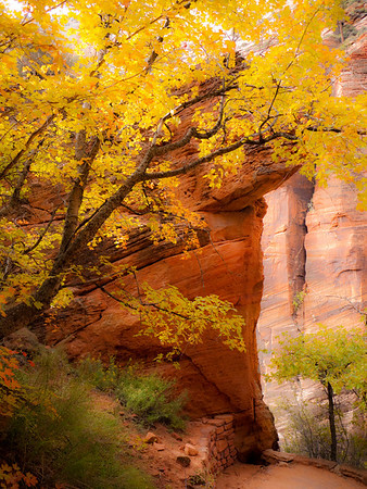 Zion National Park, October 2010