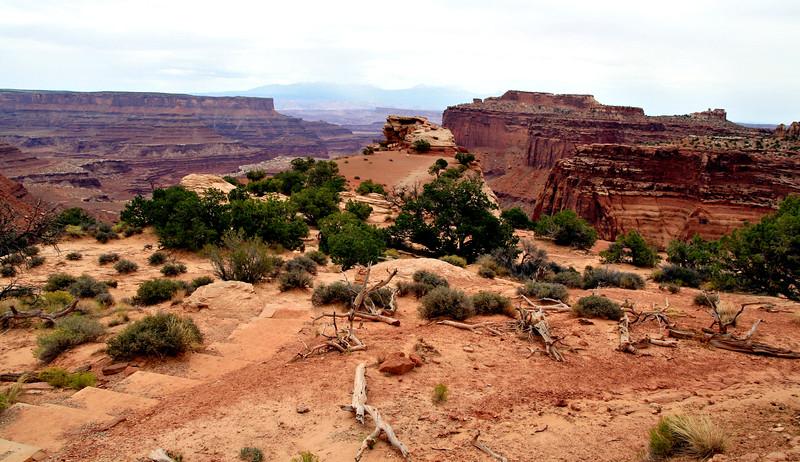 CanyonlandsNationalPark-028