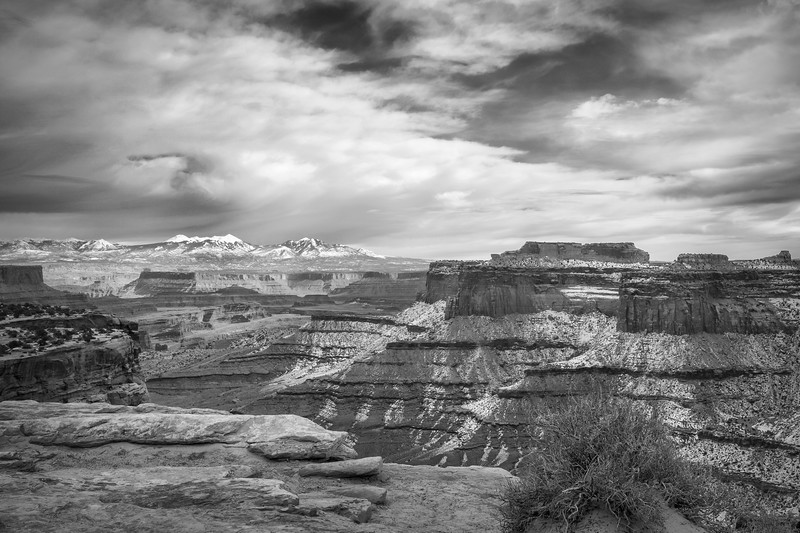 Canyonlands Winter BW
