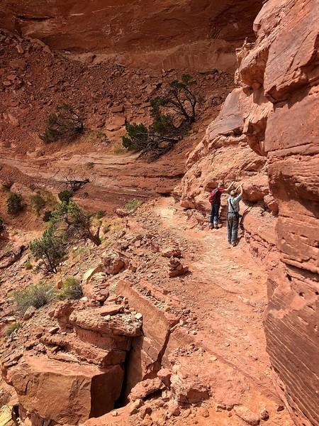 False Kiva Trail Ledge