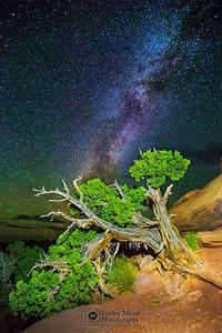 """Paradise Slope,"" Canyonlands Milky Way, Canyonlands National Park, Utah"