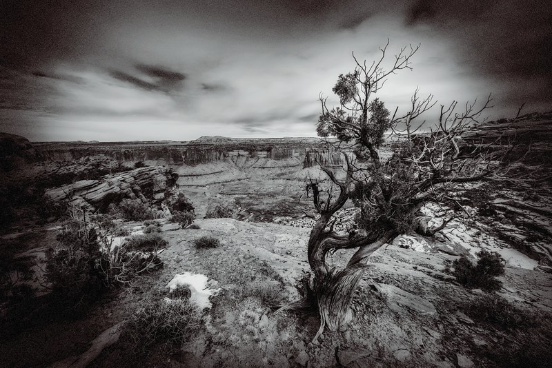 Canyonlands Winter