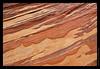 536 Navajo Sandstone A