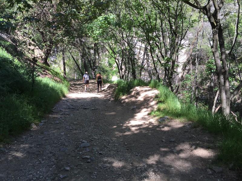 Trail View # 23