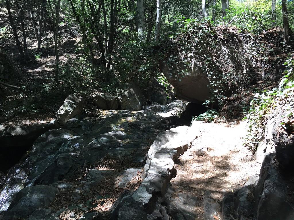 Trail View # 24