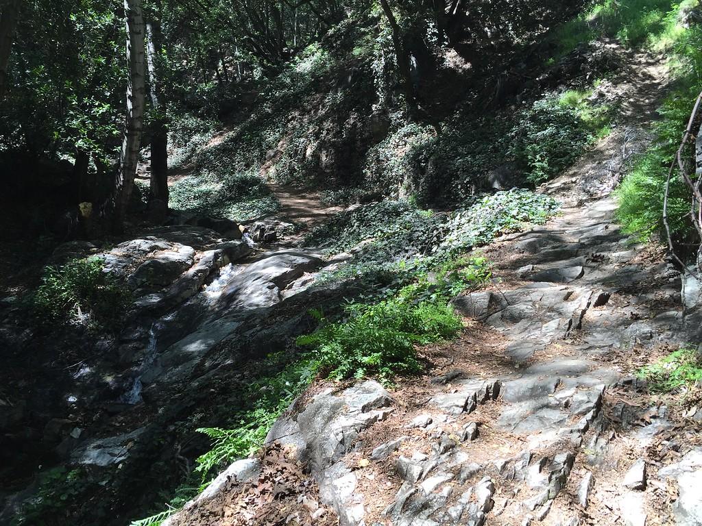 Trail View # 33