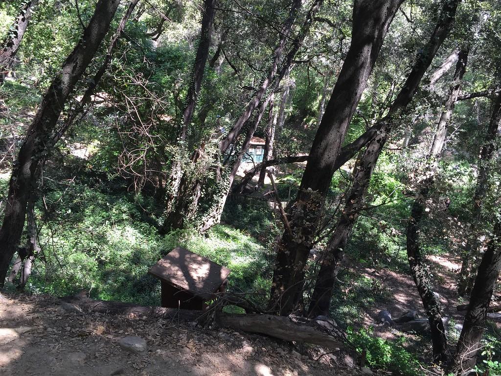 Trail View # 22