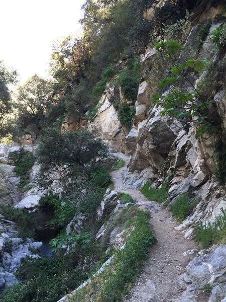 Trail View # 1