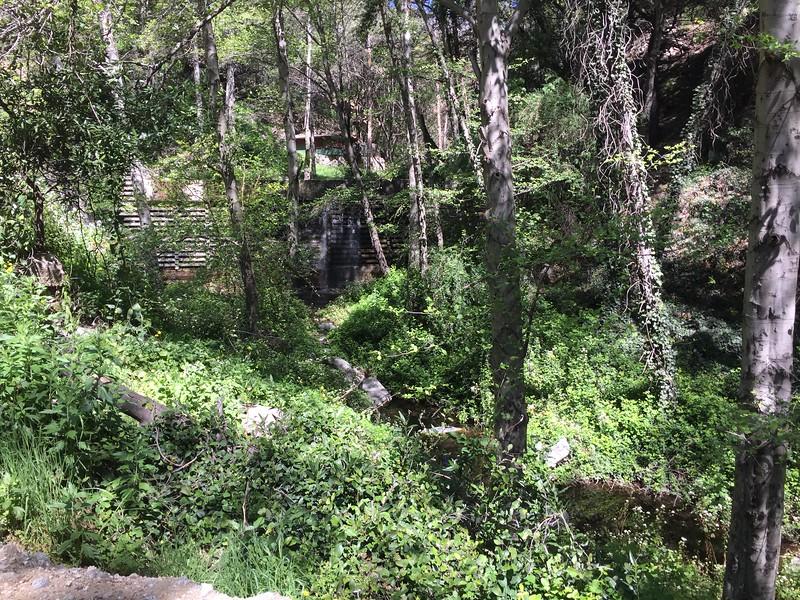 Trail View # 29