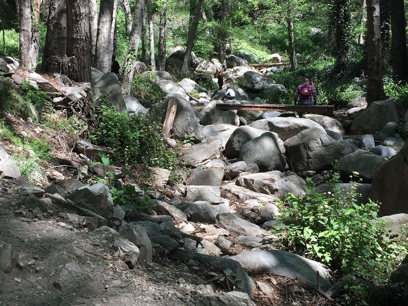 Trail View # 11