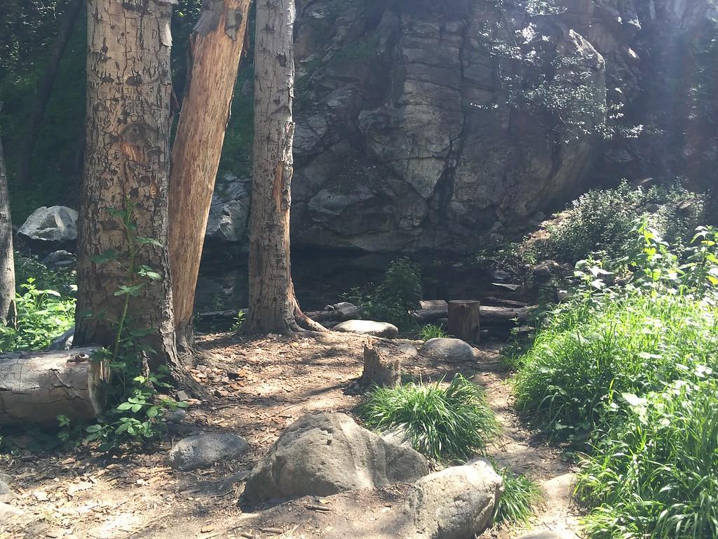 Trail View # 3