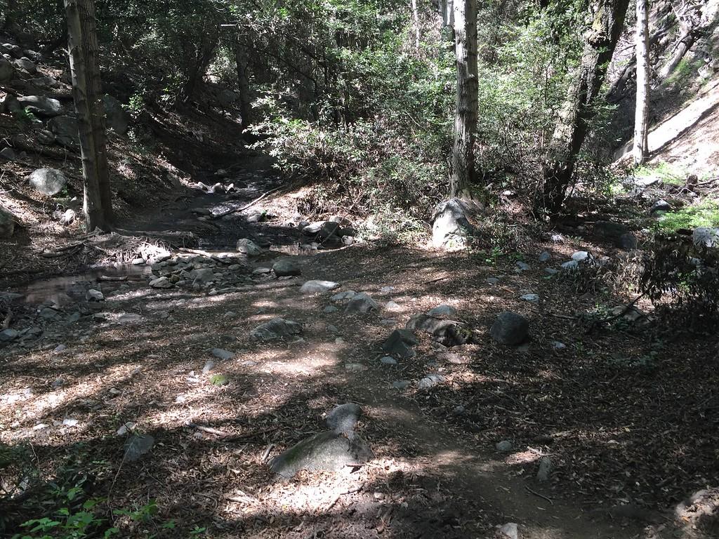 Trail View # 5