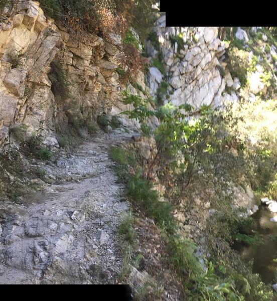 Trail View # 17