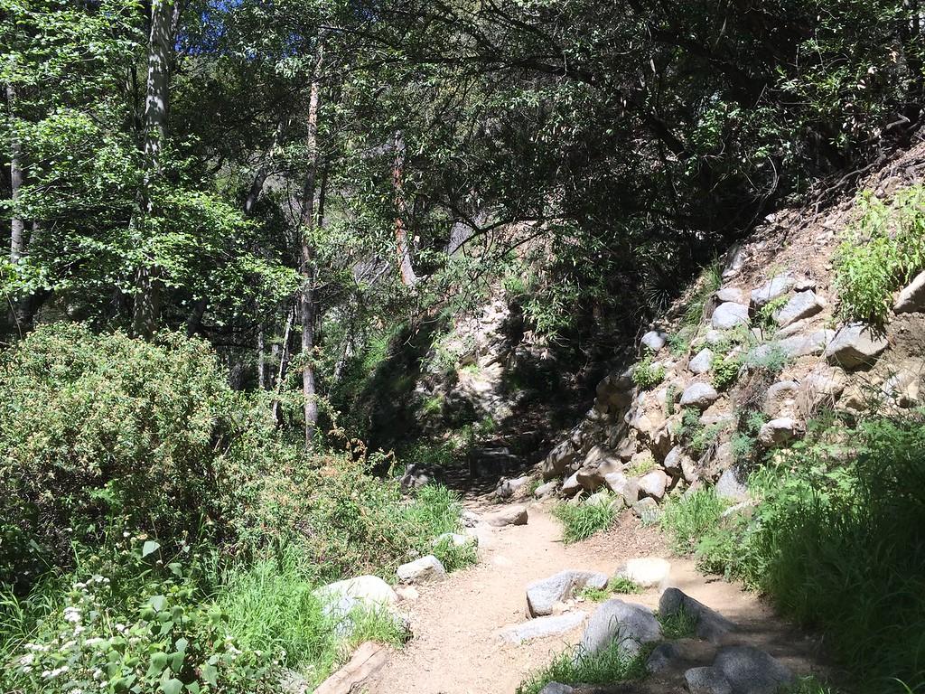 Trail View # 10