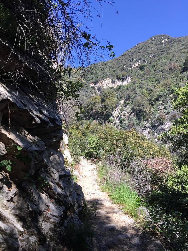 Trail View # 13