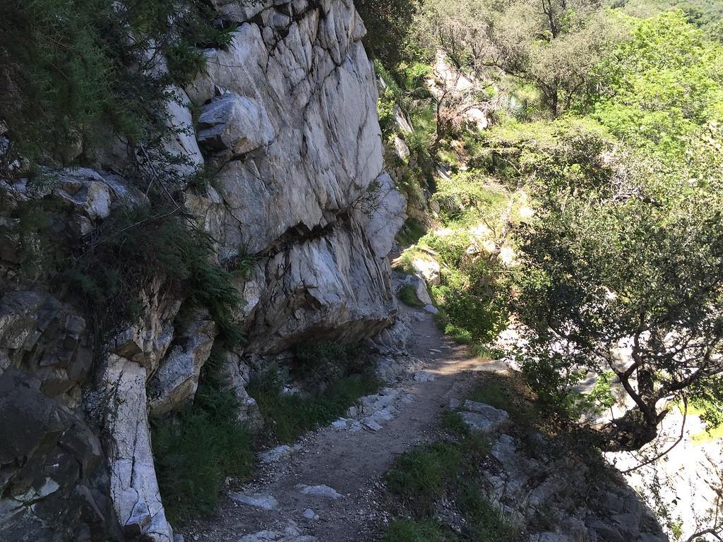 Trail View # 8