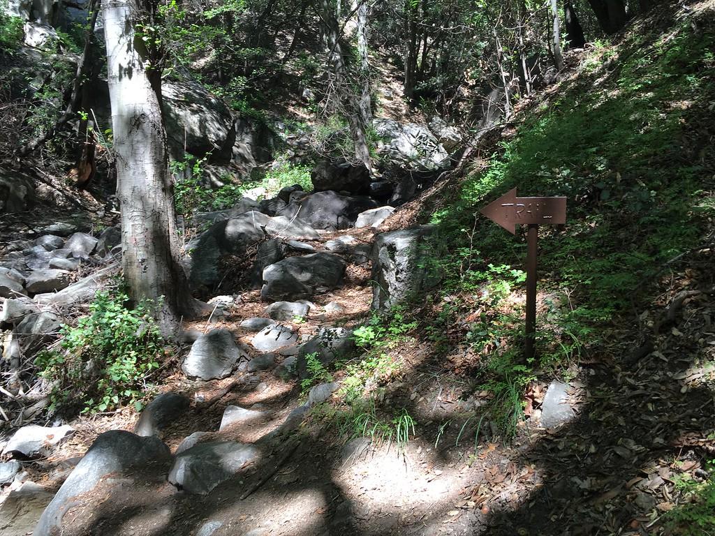 Trail View # 20