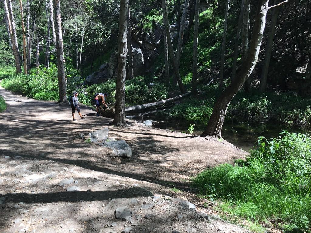 Trail View # 31