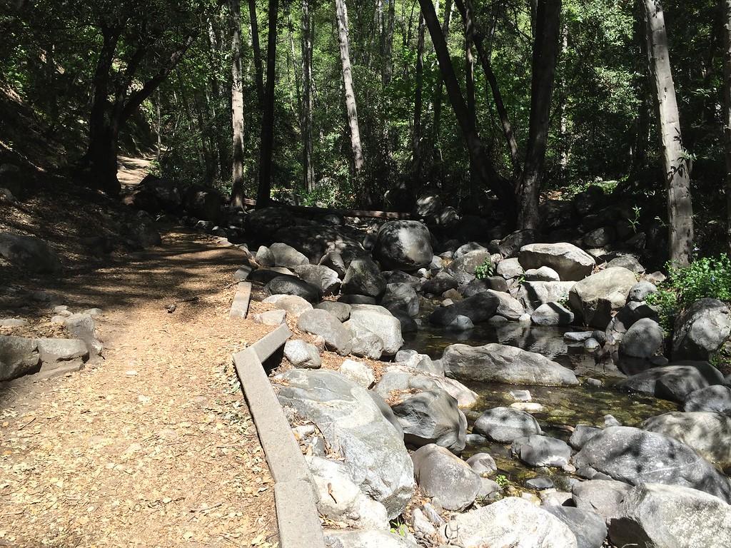 Trail View # 14