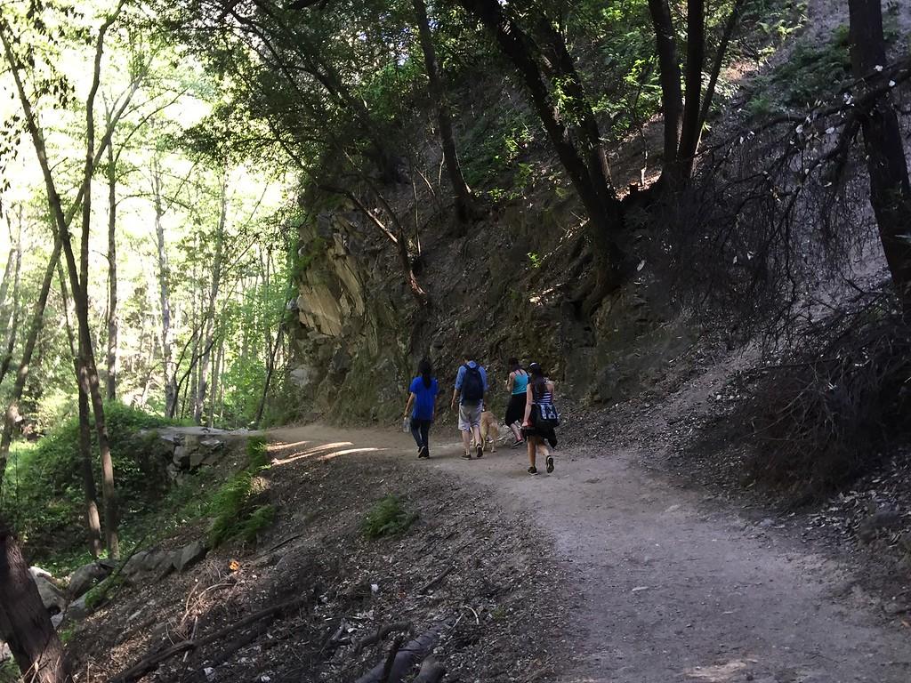 Trail View # 15