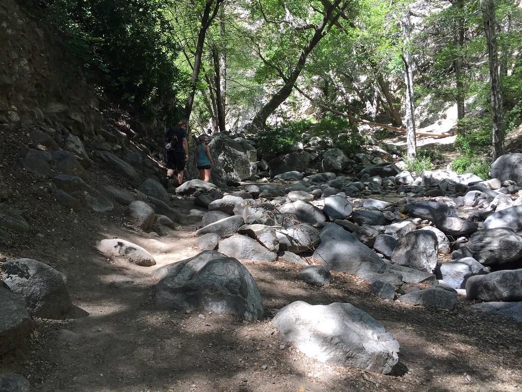 Trail View # 28