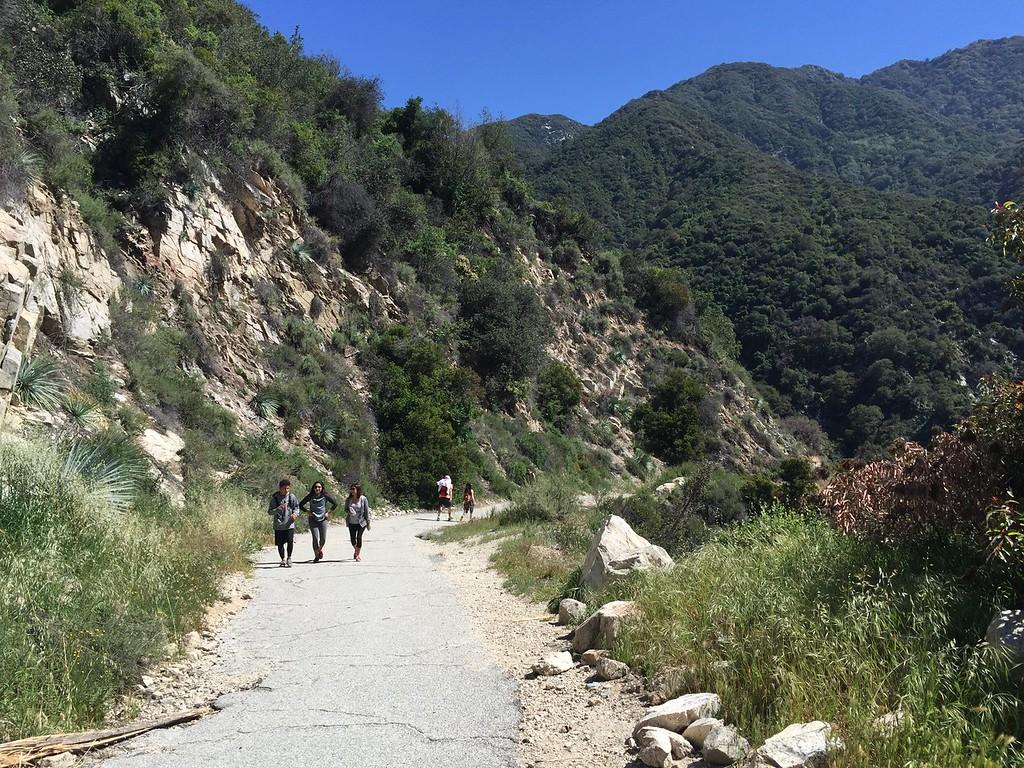Trail Entrance View # 3