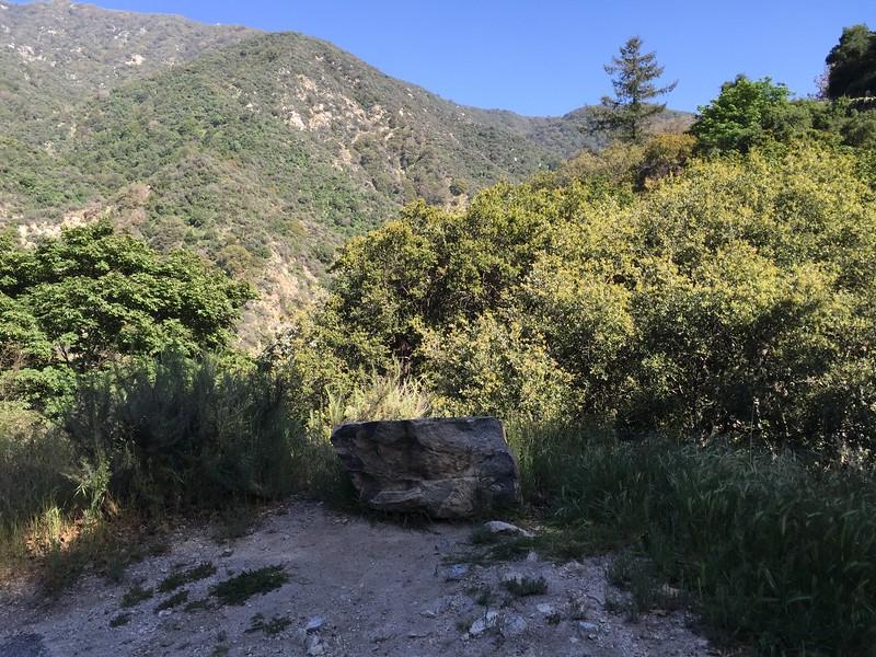 Trail View # 25