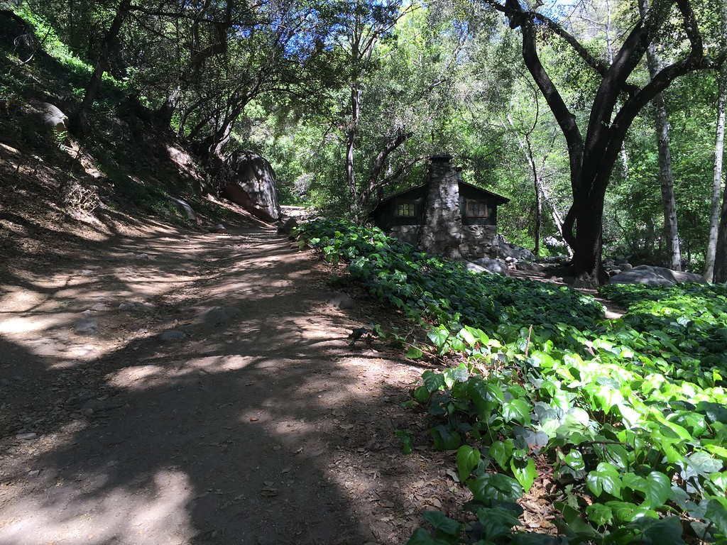 Trail View # 19