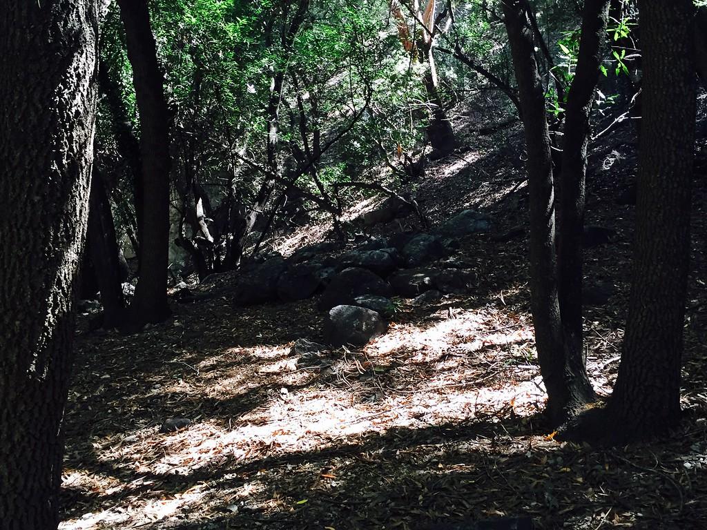 Trail View # 32
