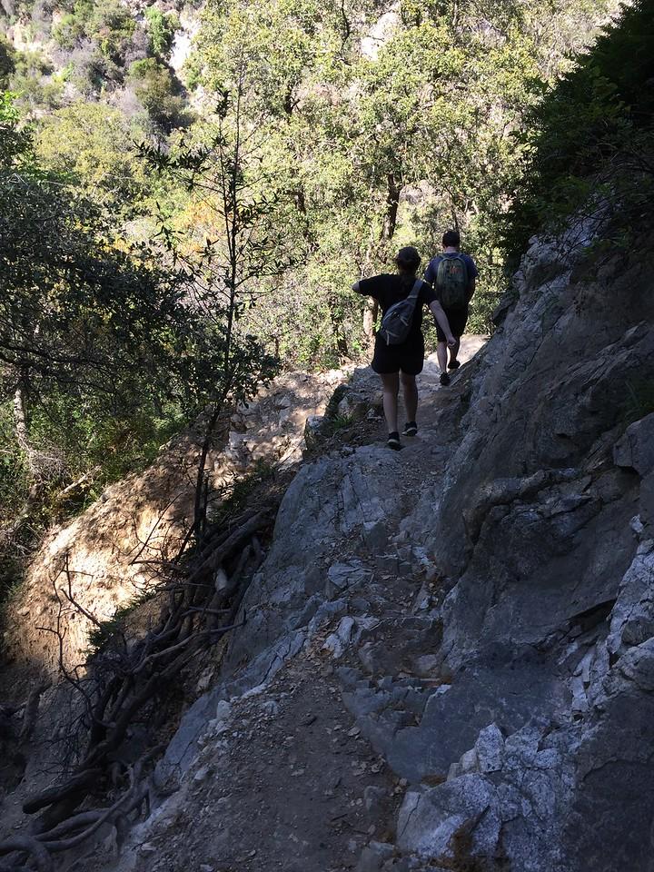 Trail View # 21