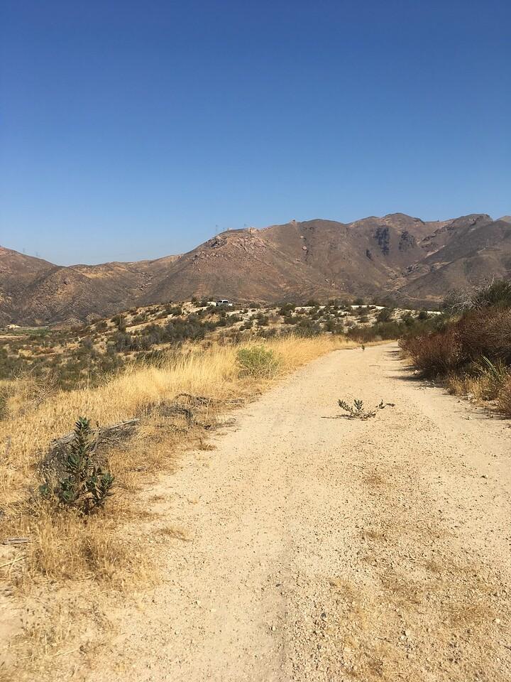 Mesa View # 45