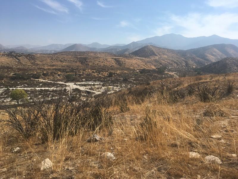 Mesa View # 7