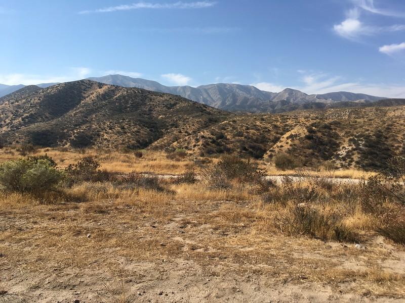Mesa View # 28