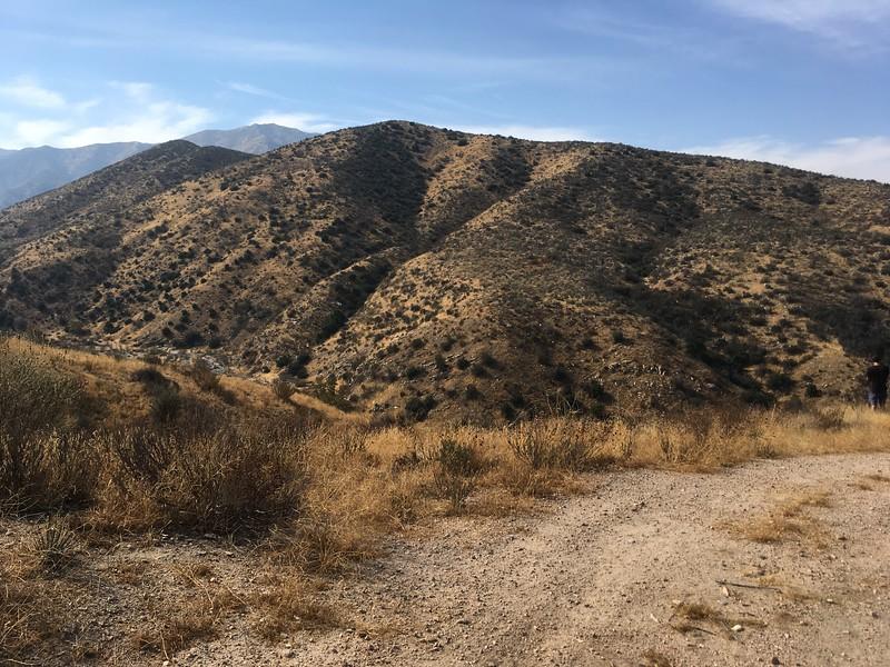 Mesa View # 17