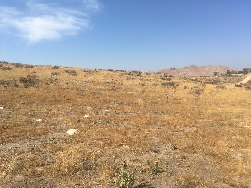 Mesa View # 2