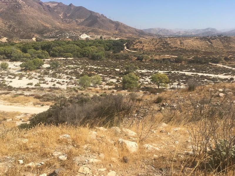 Mesa View # 4