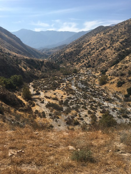 Mesa View # 20