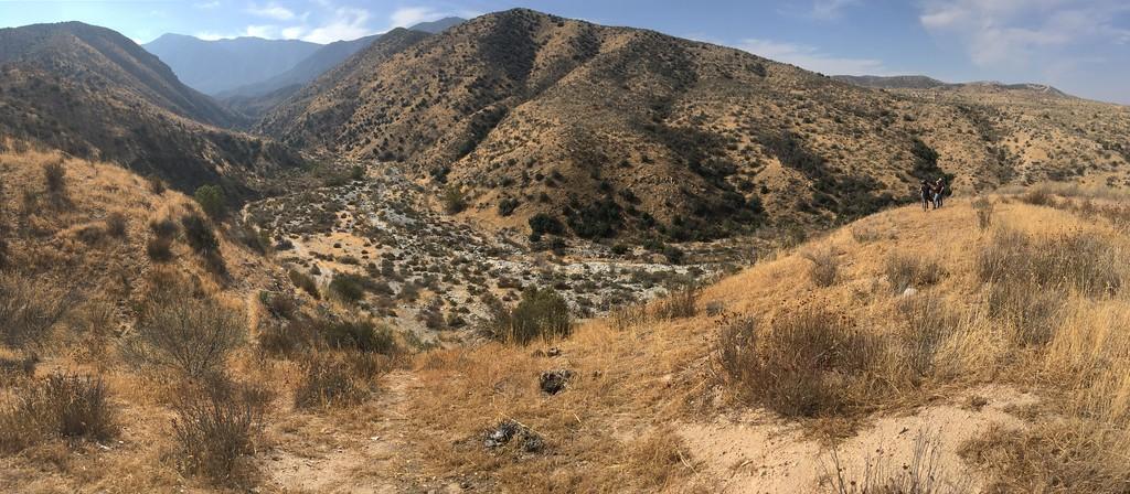 Mesa View # 33