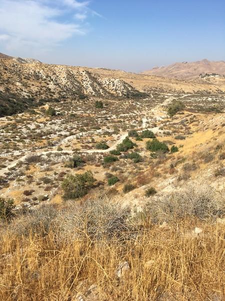 Mesa View # 26