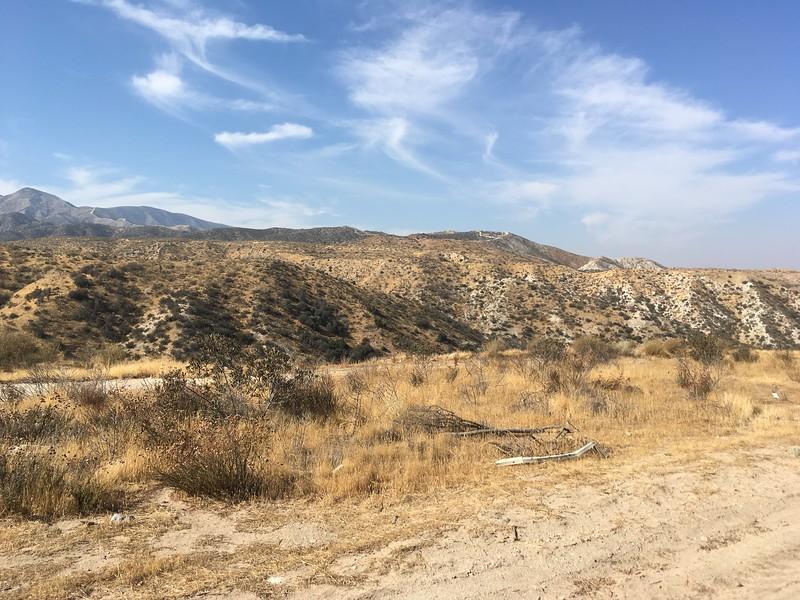 Mesa View # 23