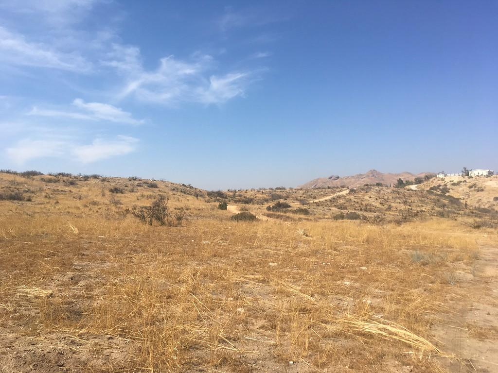 Mesa View # 1