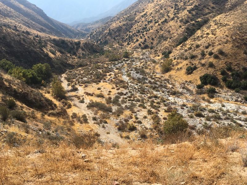 Mesa View # 21