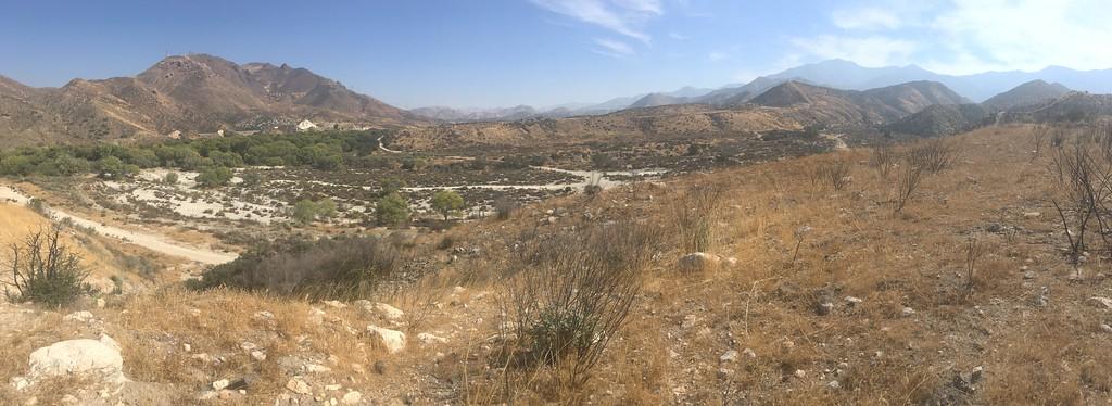 Mesa View # 8